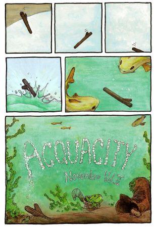acquacity 003 (Copia)